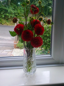 flowers from marie