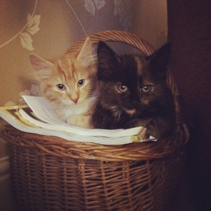 lenny & lily