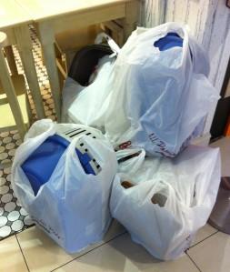 pet shopping singapore02