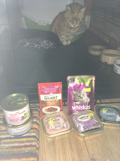 henderson with food from pet company
